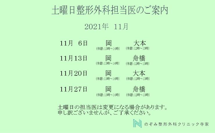 東広島市西条町寺家11月土曜日診療案内